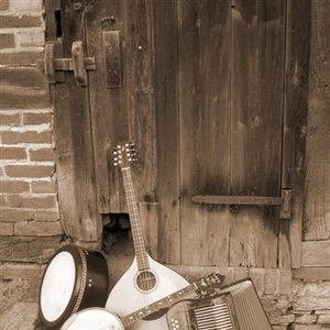 Immagine per 'Irish Folk Music'