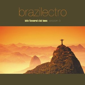Image for 'Brazilectro Session 5 (disc 1)'