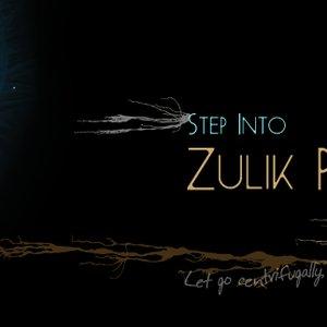 Image for 'Zulik'