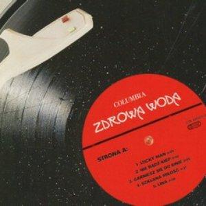 Image for 'Zdrowa woda'