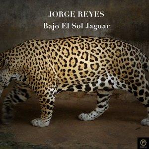 Jorge Reyes Pocito 11