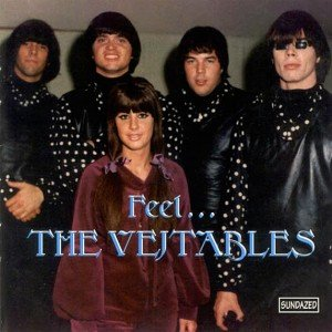 Image for 'Feel...The Vejtables'