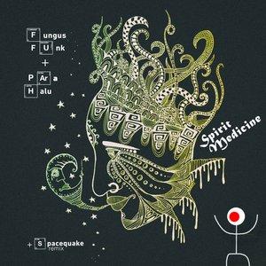 Image for 'Spirit Medicine'