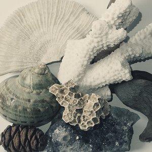 Image for 'Garden & Cosmos, Uton / Sunhiilow split'