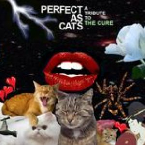 Image for 'Perfect As Cats: A Tribute to The Cure'