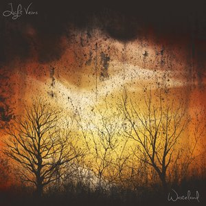 Image for 'Light Veins'