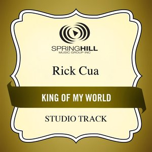 Image for 'King of My World (Studio Track)'