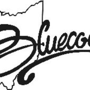Image for 'Bluecoats'