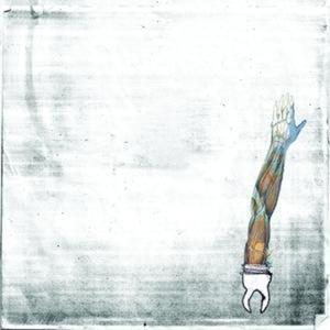 Image for 'New White'