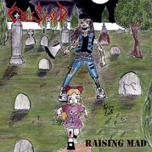 Image for 'Raising Mad'