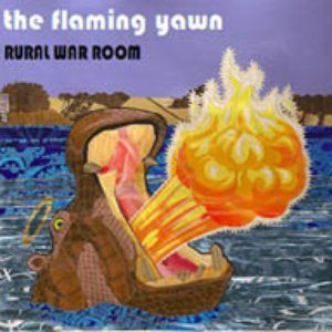 Image for 'The Flaming Yawn'