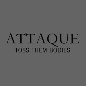 Image for 'Toss Them Bodies'