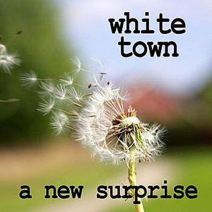 Image for 'A New Surprise'