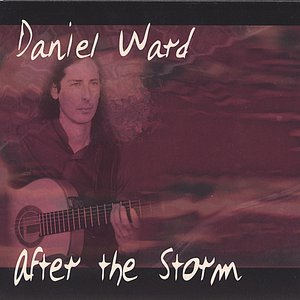 Image for 'After the Storm'