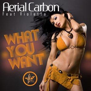 Imagem de 'What You Want'