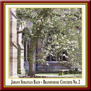 Image for 'Bach: Brandenburg Concerto No.2 - (3) Allegro assai'