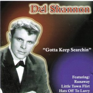 Image for 'Gotta Keep Searchin'