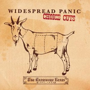 Image for 'Choice Cuts: The Capricorn Years 1991-1999'