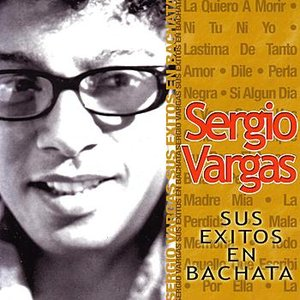 Image for 'Sus Exitos En Bachata'