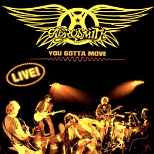 Image for 'You Gotta Move (disc 1)'