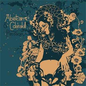 Image for 'Musica Domestica (Cdatakill Remix)'