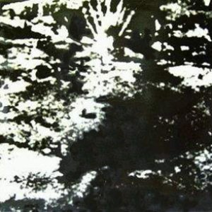 Image for 'Schattenreich'