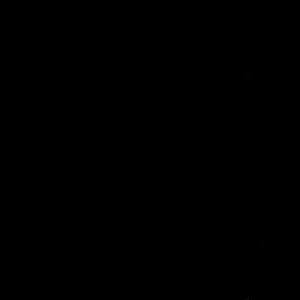Image for 'Omnivore'