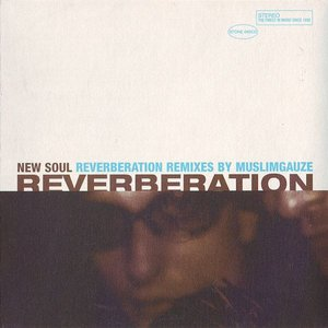 Image for 'New Soul (Reverberation Remixes by Muslimgauze)'
