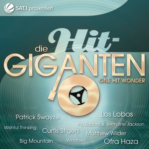 Image for 'Die Hit Giganten - One Hit Wonder'