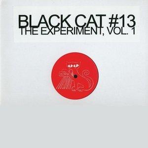 Imagen de 'The Experiment Vol. 1'