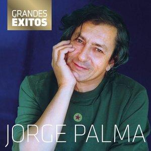 Bild für 'Grandes Êxitos'