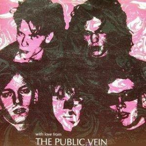 Imagem de 'The Public Vein'