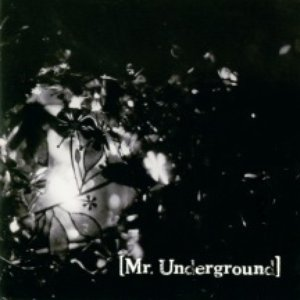 Image for 'Mr.Underground'