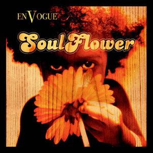 Image for 'Soul Flower'