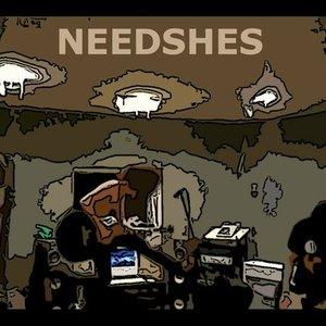 Bild för 'needshes'