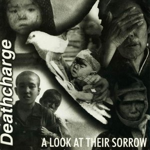 Image for 'A Look at Their Sorrow'