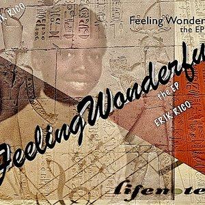 Bild für 'Feeling Wonderful the EP'