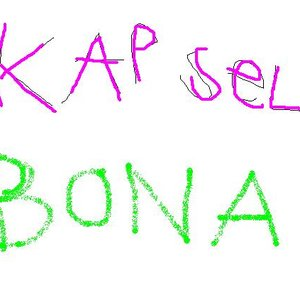 Bild för 'Bona'