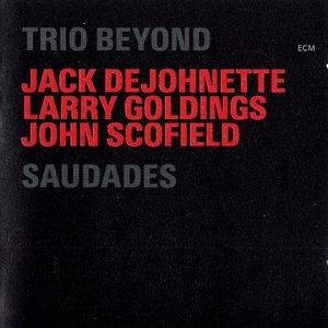 Image for 'Saudades (disc 2)'