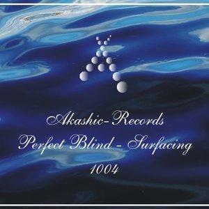 Image for 'Akashic1004 - Surfacing'