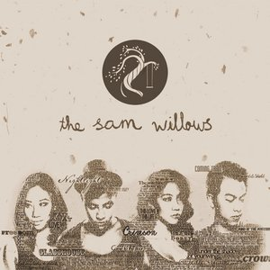 Image for 'The Sam Willows'