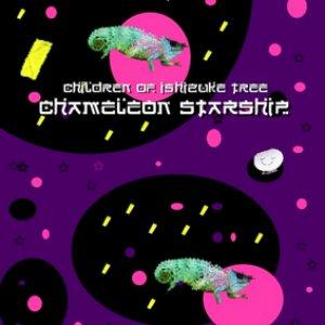 Image for 'Chameleon Starship'