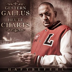 Image for 'Gestern Gallus - Heute Charts'