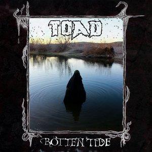 Image for 'Rotten Tide'