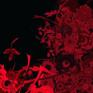 Image for 'amanogawa 1997'