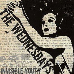 Immagine per 'Invisible Youth'