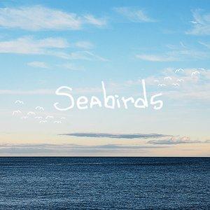 Image for 'Seabirds'