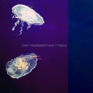 Image for 'Can't Remember How It Feels'