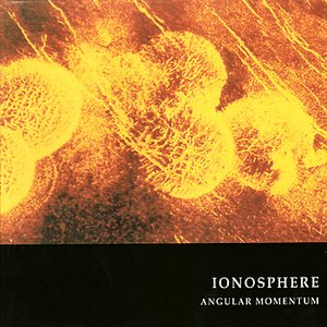 Image for 'Angular Momentum'