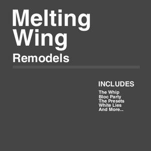 Image for 'Remodels'